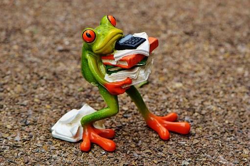 Frog traslado