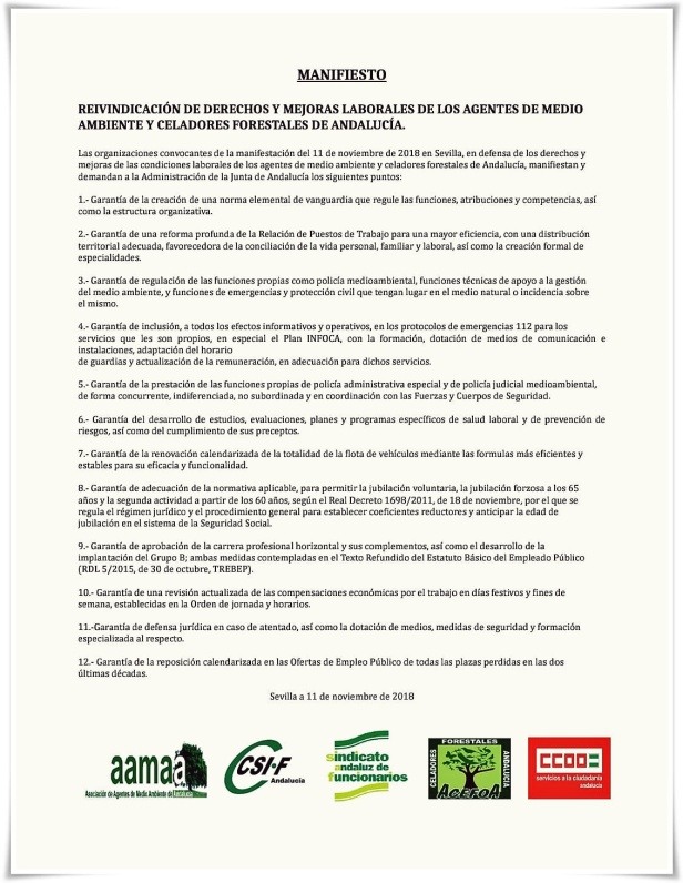 MANIFIESTO AMAs y Celadores For. 11112018 bg